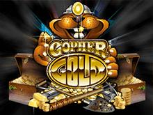 Аппарат Золото Суслика в казино